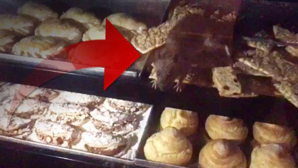 Farenin cirit attığı pastanenin sahibinden ilk açıklama…