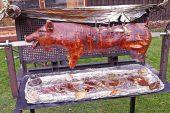 Ramazanda Türk camisi önünde domuz çevirmek isteyen Pegida'ya yasak