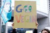 6 vegan vandalizm şüphesiyle gözaltına alındı